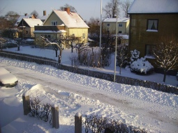 One of the only non-blurry photos from my trip to Sweden. It was freezing. Never bisit in January.