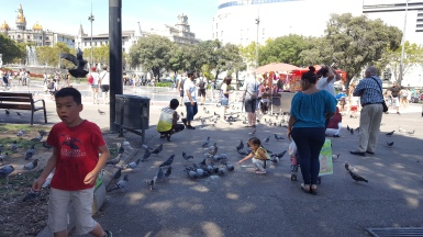 Kids playing with birds.